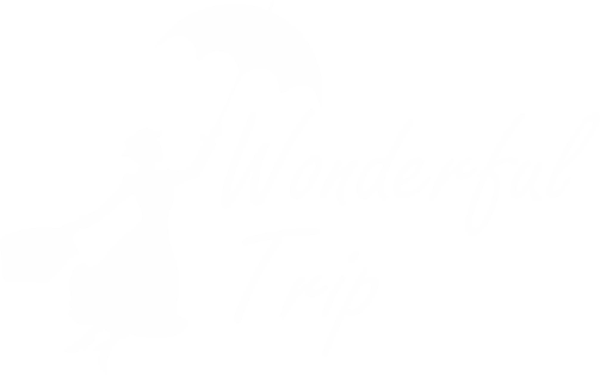 Логотип Wonderful Trip